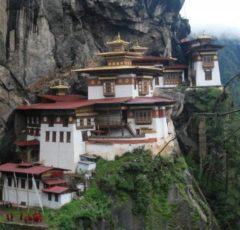 bhutan-nido-del-tigre